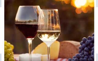 7 идей путешествий для ценителей вина